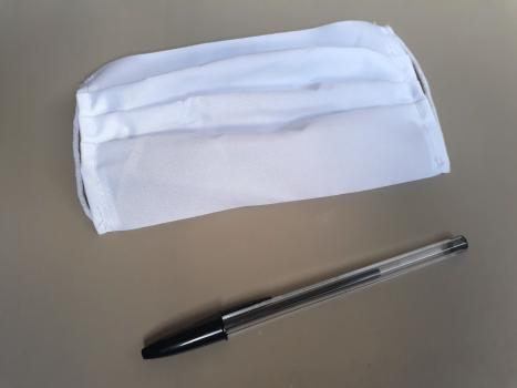 Il est recommandé à chaque électeur de se munir d'un masque et d'un stylo