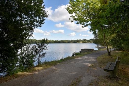 Lac de Beaulieu sentier rive ouest (Le Champ Failli)